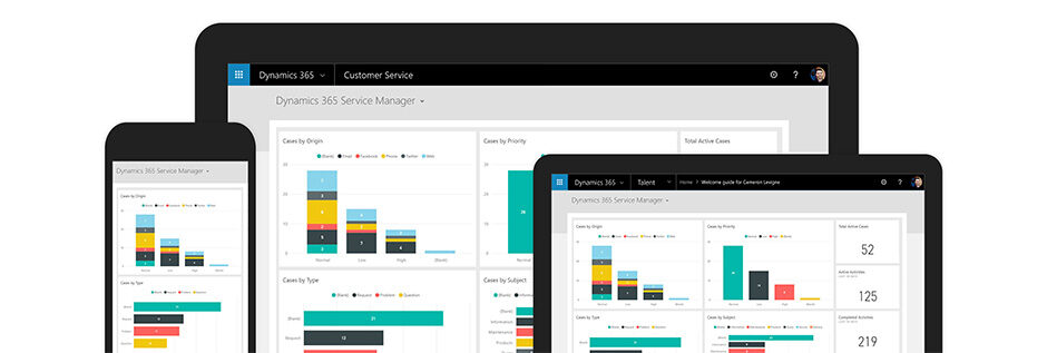Microsoft 365 Dynamics Customer Service